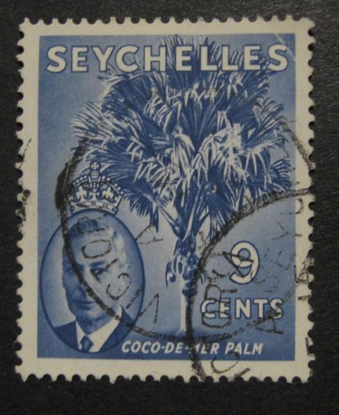 Seychelly [B11]