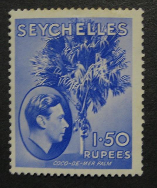 Seychelly * (lehce narezlá část lepu zoubkování) [B10]